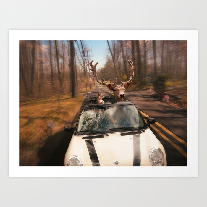 Drive and Let Live Art Print