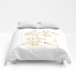 Golden Flower on White Background Comforters