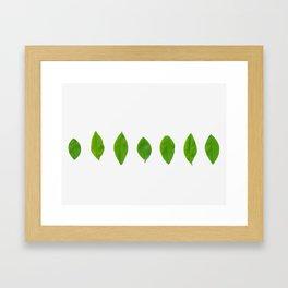 Brisk Bright Leaves Framed Art Print