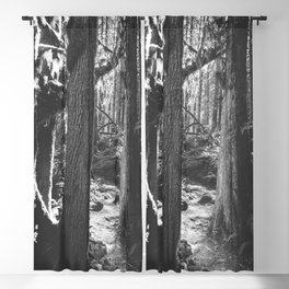 Forest Wonderland - Black and White Nature Photography Blackout Curtain