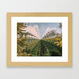 iterations i Framed Art Print