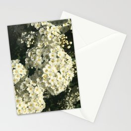 Not Roses Stationery Cards