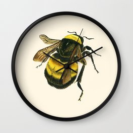 Vintage Scientific Bee Wall Clock
