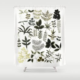 Watercolor of leaves Shower Curtain