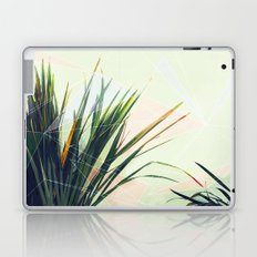 palm and triangles Laptop & iPad Skin