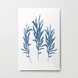 Eucalyptus Branches Blue Metal Print