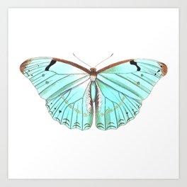 Butterfly Flutter By Art Print