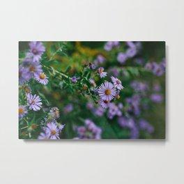 Flowers VII: Ohio Metal Print