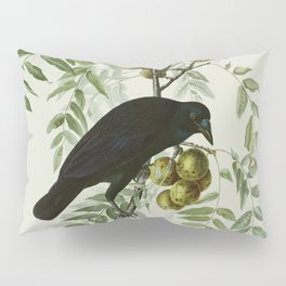 Vintage Crow Illustration Pillow Sham