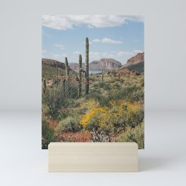 Arizona Spring Mini Art Print