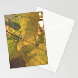 Early Fall Stationery Cards