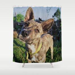Dog by Furkan Yılmaz Shower Curtain