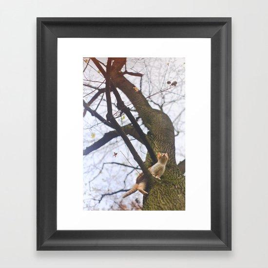 Little orange cat on a big tree Framed Art Print