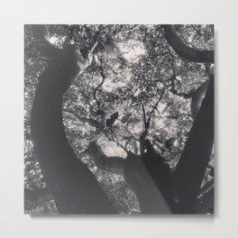 Urban forest 5 Metal Print