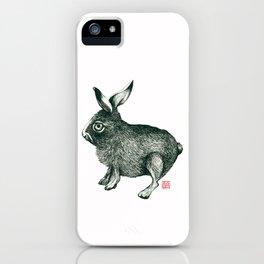 Cold Rabbit iPhone Case