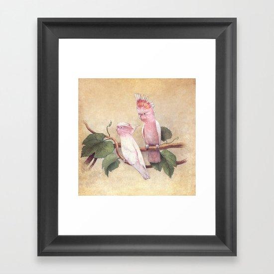 Pink Cockatoos  Framed Art Print