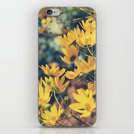 Sunny Autumn Breezes iPhone Skin