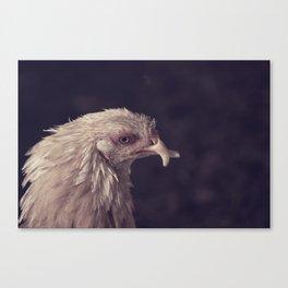 Chicken Profile Canvas Print
