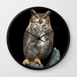 Superb Owl Sunday Wall Clock