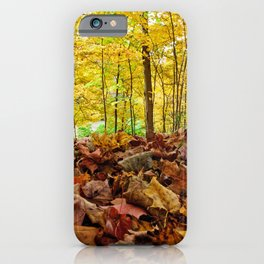 Down Low iPhone Case