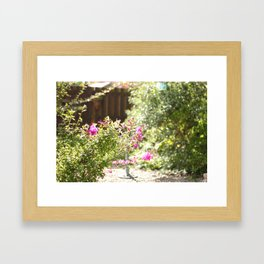 Summer Garden Framed Art Print