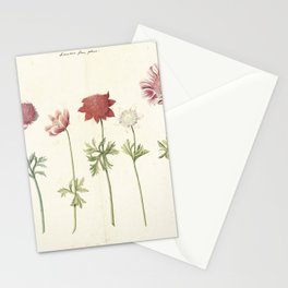 Five studies of anemones, anonymous, c. 1760 - c. 1770 Stationery Cards