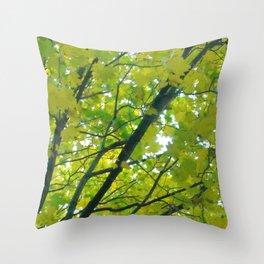 Lush ~ yellow-green leaves 4 U! ~ summer tree Throw Pillow