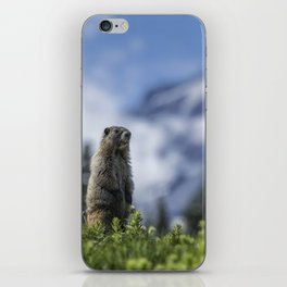 Marmot Checking Out His Neighborhood at Mount Rainier, No. 3 iPhone Skin