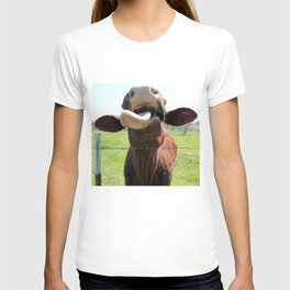 Can I Have a Lick? T-shirt