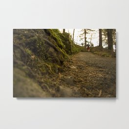Caminos de Oregon Metal Print