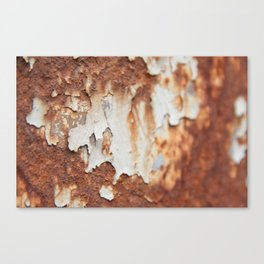 Rust II Canvas Print