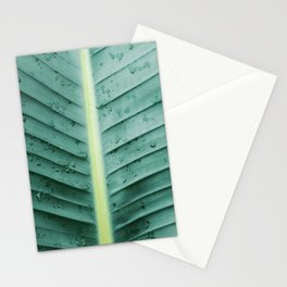 After the Rain In Paradise Stationery Cards