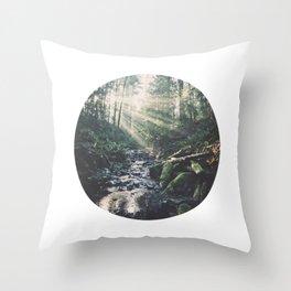 Sunbeam River Throw Pillow
