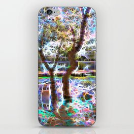 Trees Pond and Light Streams iPhone Skin