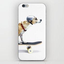 Skate Punk - Skateboarding Chihuahua Dog inTiny Helmet iPhone Skin
