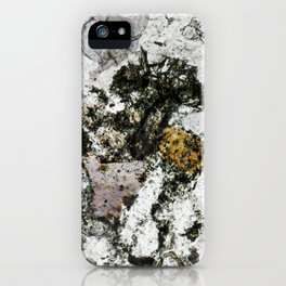 Hornfels 02 - Frozen Still Life iPhone Case