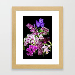 Orchids - Cool colors! Framed Art Print