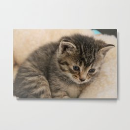 Chewy the Invincible Metal Print