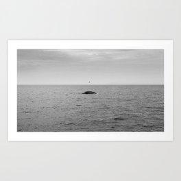 Blue Whale off of Dana Point Art Print