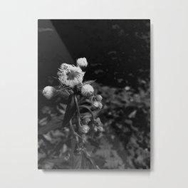 Bud Metal Print