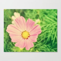 Golden Pink Canvas Print