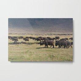 Ngorongoro Metal Print