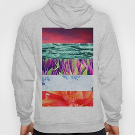 Photography Collage Hoody