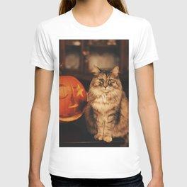 Cat by Karly Jones T-shirt