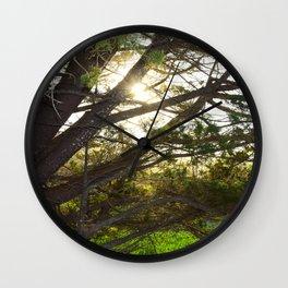 sunset through tree Wall Clock