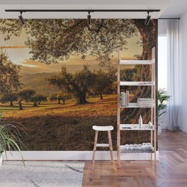 Olive Groves Along the Mountainside Wall Mural