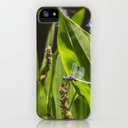 Great Blue Skimmer, No. 2 iPhone Case
