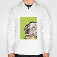 golden retriever Hoodies featuring George the golden retriever by Pawblo Picasso