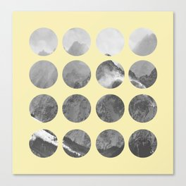 Quarter Quills 1 Canvas Print