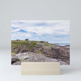 View of Cove Battery Mini Art Print